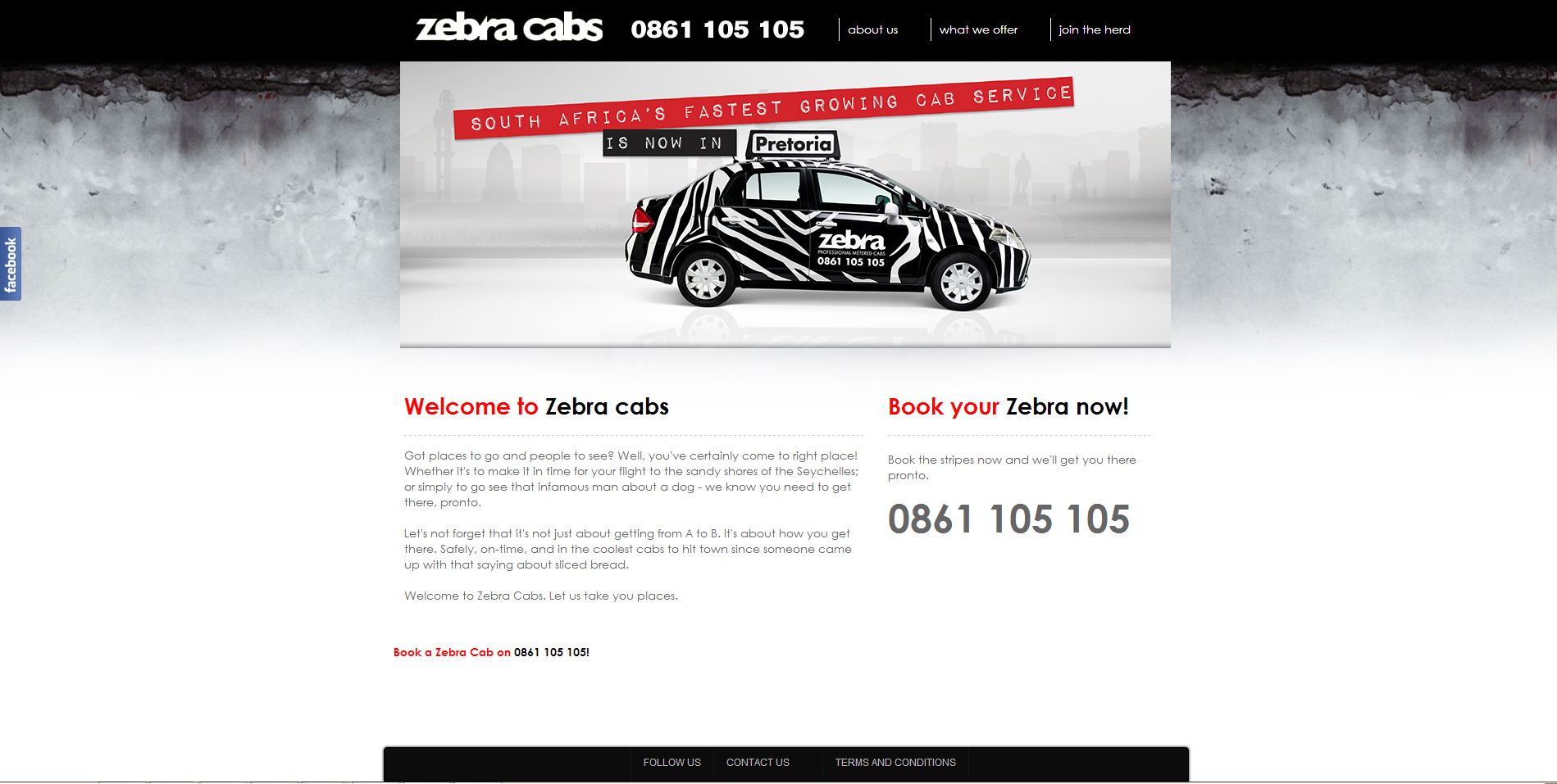 zebra big